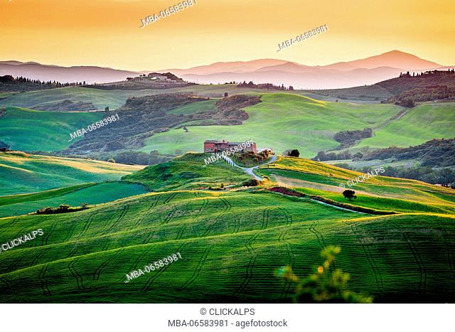 Val d'Orcia, Tuscany, Italy, A lonely farmhouse with cypress and olive trees, rolling hills