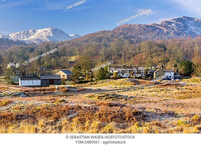 View over Elterwater towards Lingmoor Fell, Lake District National Park, Cumbria, England, United Kingdom, Europe