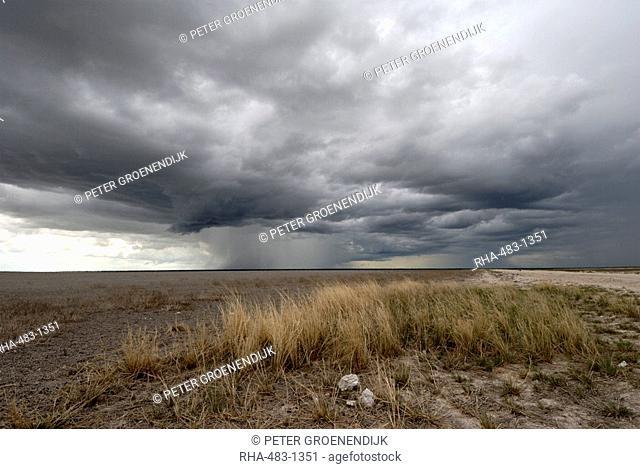 Threatening storm, Etosha National Park, Namibia, Africa