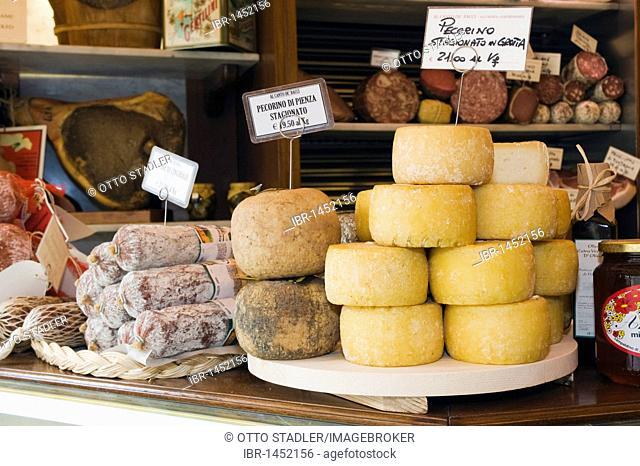 Pecorino cheese in the deli, Canto e De'Bacci Salumeria Gastronomia, Arezzo, Tuscany, Italy, Europe