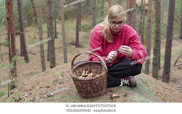Young woman picking and cleaning wild mushrooms in the forest