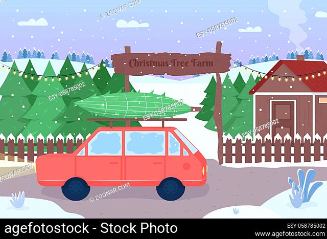 Christmas tree farm flat color vector illustration. Red car with packed evergreen spruce. Road covered with snow. Snowy countryside 2D cartoon landscape with...