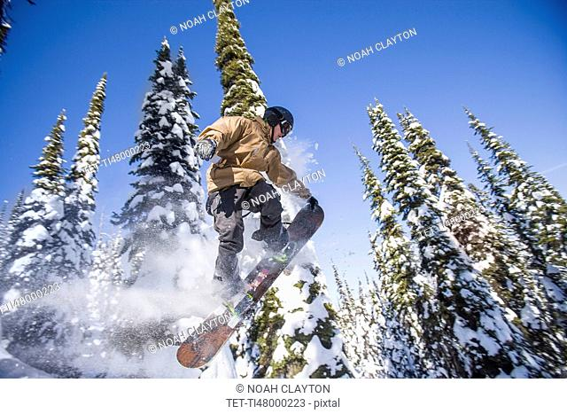 Snowboarder in mid-air against snowy trees