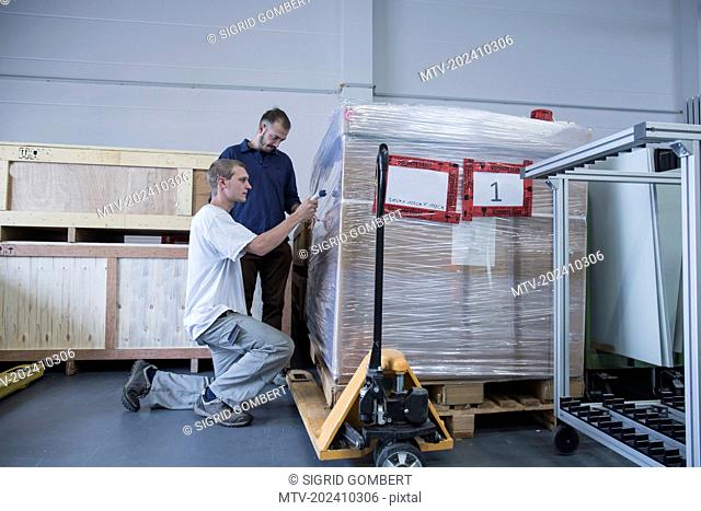 Store workers packaging in a distribution warehouse, Freiburg im Breisgau, Baden-Württemberg, Germany
