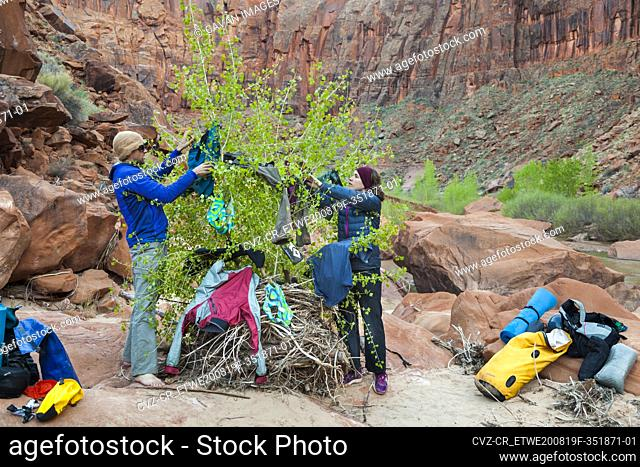 People hang wet clothes on tree at camp on Escalante River, Utah