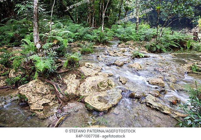 Monumento Natural Semuc Champey, Alta Verapaz, Guatemala