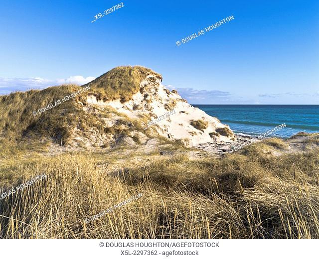 SANDAY ORKNEY Marram grass sand dune beach