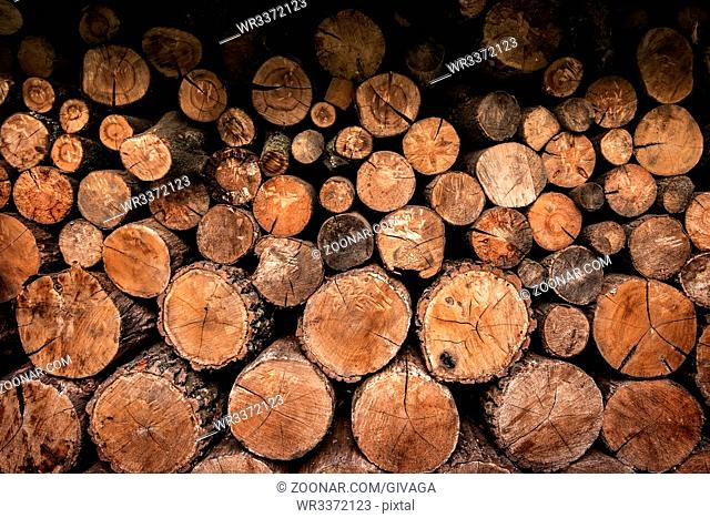 Background of firewoods stacked in pile close up