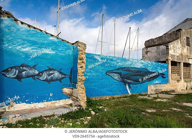 Tuna wall painting. Sancti Petri, Chiclana de la Frontera, Cadiz province Cadiz, Andalusia Spain. Europe