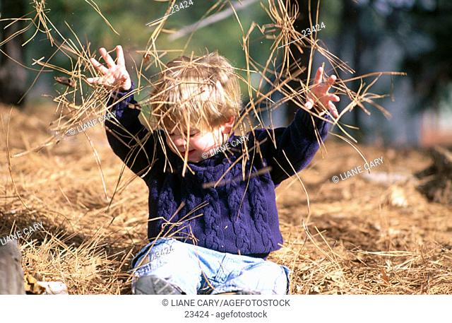 Child playing in pine needles