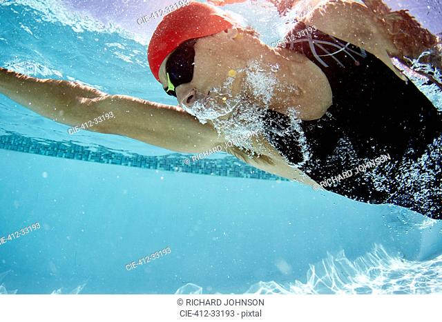 Male swimmer swimming underwater in swimming pool