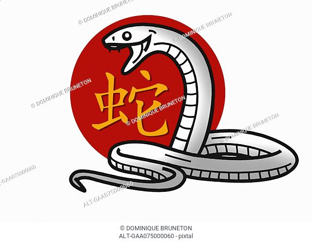 Chinese zodiac sign for year of the snake