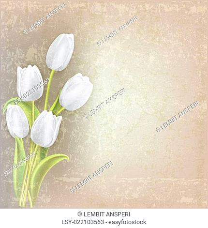 abstract floral background with tulips