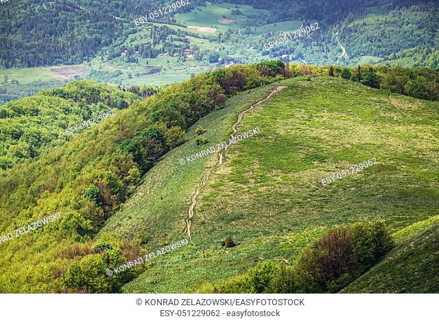Path on a green hills seen from Wetlina High Mountain Pasture in Western Bieszczady Mountains in Poland