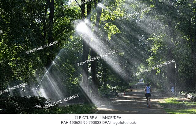 25 June 2019, Berlin: A woman walks in the zoo through the water fountains of a lawn sprinkler. The light of the sun is refracted in the drops of water