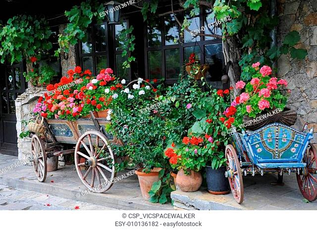 Flowers in the Carts and Planters