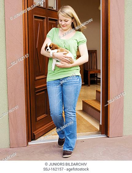 young woman carrying Cavalier King Charles Spaniel dog puppy