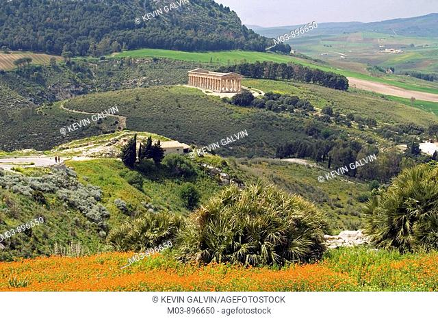 Ancient Greek Doric Temple Segesta archaeological site Sicily Italy