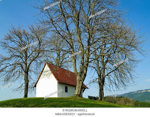Germany, Baden-Wurttemberg, Weilen unter den Rinnen (village), Ottilienkapelle, former pilgrimage chapel, horse chestnut
