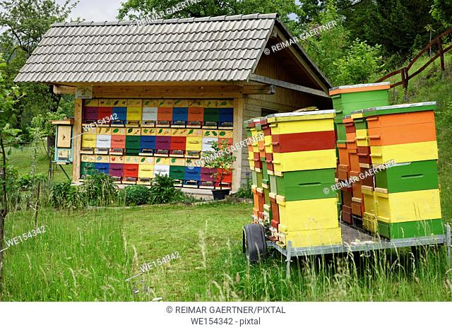 Colorful traditionally painted apiary beehive house and boxes at Kralov Med in Selo near Bled Slovenia in Spring