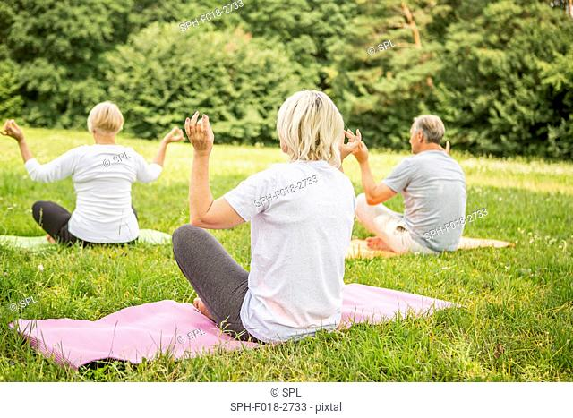 MODEL RELEASED. Three people doing yoga in field