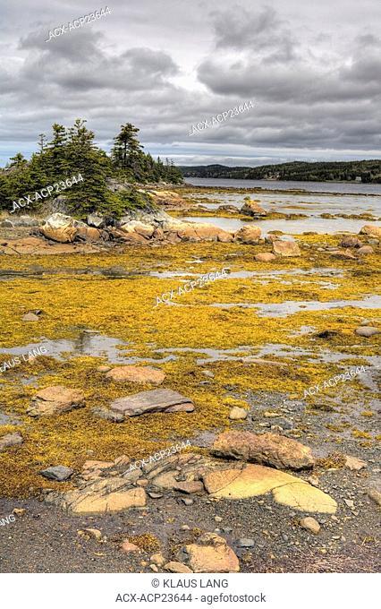Gander Bay, Newfoundland, Canada