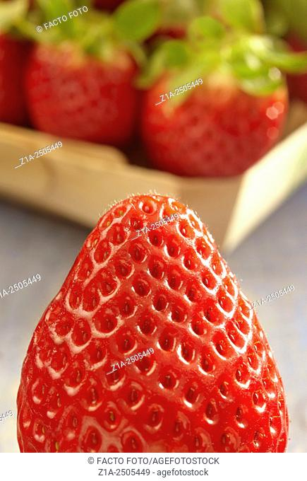 Closeup of a strawberry turned upside down with blurry background of strawberries