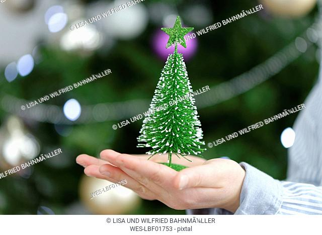 Little boy holding a toy Christmas tree, close up