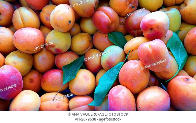 Albarillo, seasonal fruit, miajadas, Extremadura, Caceres, Spain