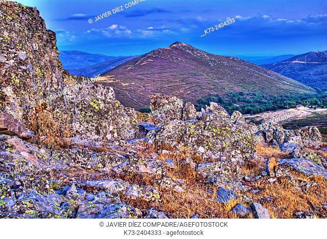 Sierra Norte. Peñalba de la Sierra. Guadalajara Province. Castilla-La Mancha. Spain