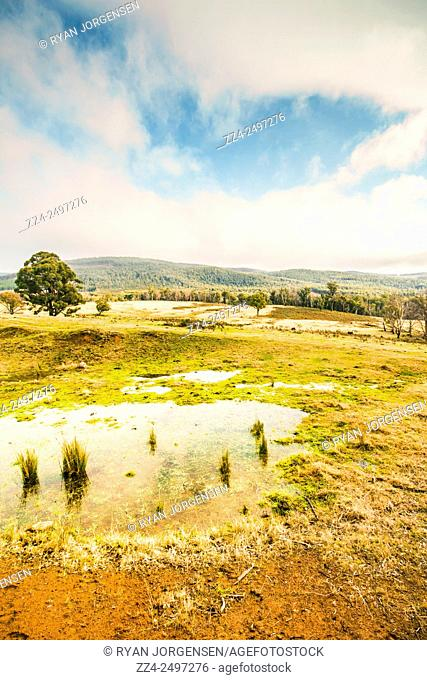 Gorgeous pastel toned landscape scene encompassing puddled fields and distant hills. Ellendale, Tasmania, Australia