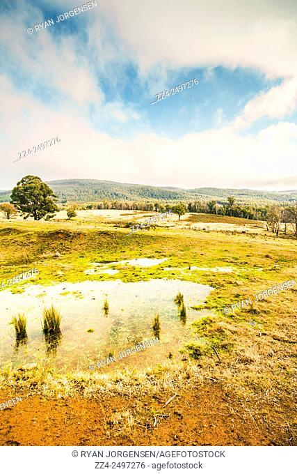 Gorgeous pastel toned landscape scene encompassing puddled fields and distant hills. Ellendale, Tasmania, Australia