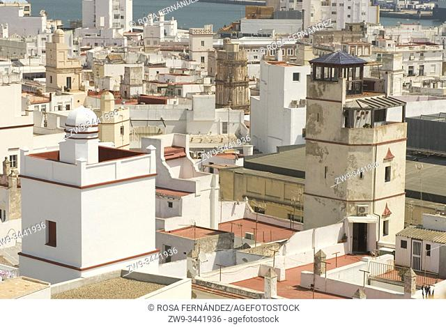 Rooftop terraces showing ancient watching towers of traders houses, Cádiz, Andalucía, Spain