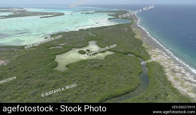 Aerial Landscape Approach to mangrove forest to Sebastopol lagoon in los Roques National Park Venezuela, Caribbean