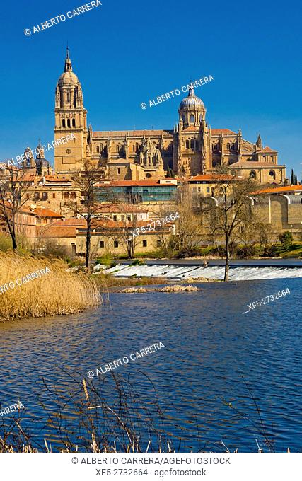 Tormes River, New and Old Cathedral of Salamanca, Cathedral of the Asunción de María, Gothic Renaissance Baroque Style,16th-18th century