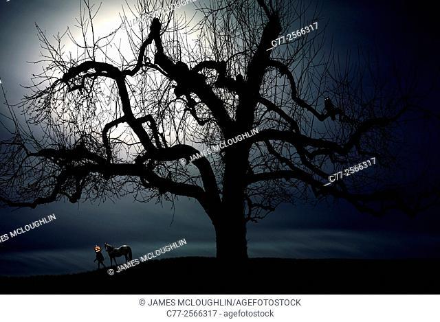 Halloween, Headless Horseman, moon