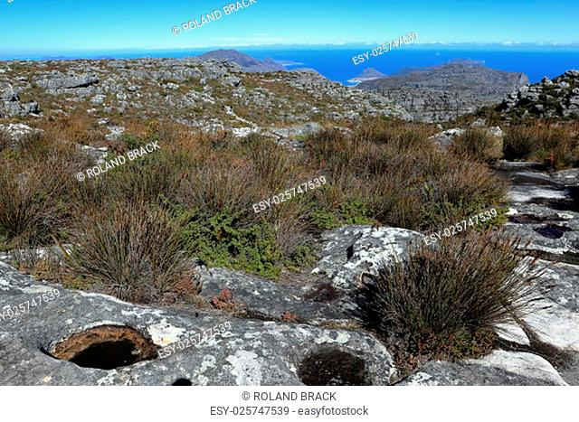 table mountain in cape town in south africa