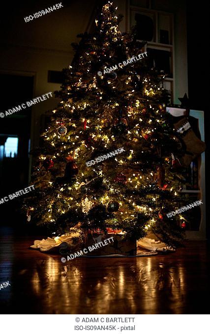 Christmas tree indoors at night
