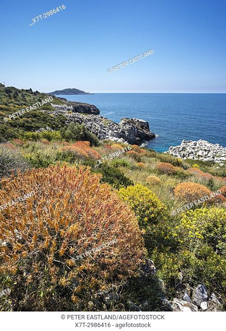 Coastal landscape between Agios Demitrios and Trachila on the outer Mani, Messinia, Peloponnese, Greece