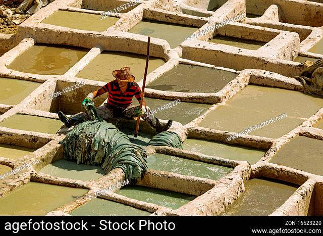 Fez, Morocco-Oct. 10, 2019: Chouara Tannery in Fez city. Workers dyeing the leathers in the vats for further process.It is the oldest and most tourist...