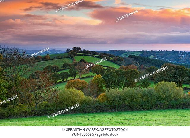 Autumn sunrise over fields near Exeter  Devon  South West England  Europe