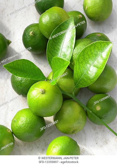 Limequats (a cross between limes and kumquats) and leaves