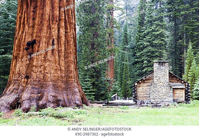 The Mariposa Grove Museum, Yosemite National Park, California, USA