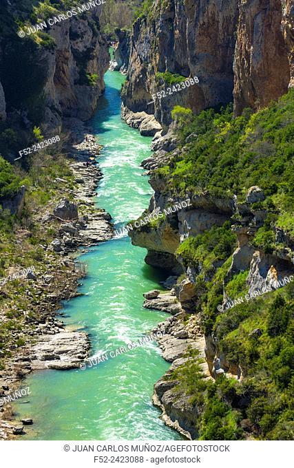 Foz de Lumbier, Salazar river, Navarra, Spain, Europe