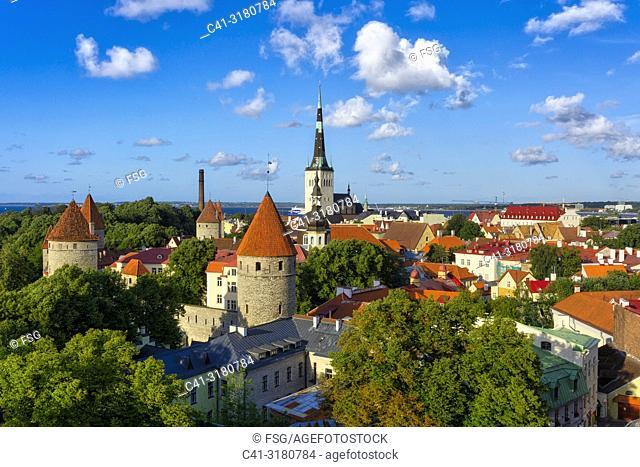 Old town. Tallinn. Estonia