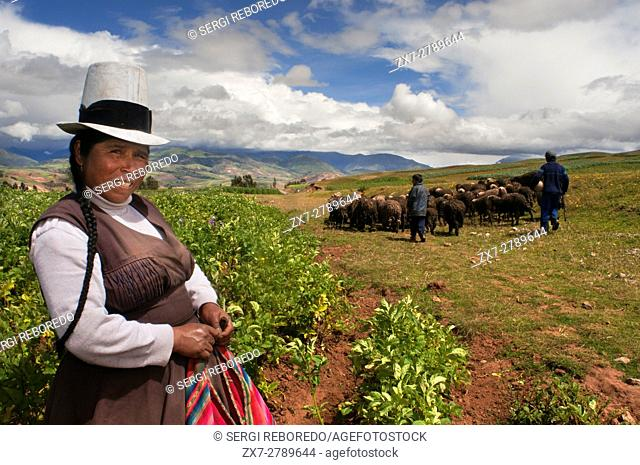 A woman growing potatoes in the Sacred Valley near Cuzco. The Sacred Valley of the Incas or the Urubamba Valley is a valley in the Andes of Peru
