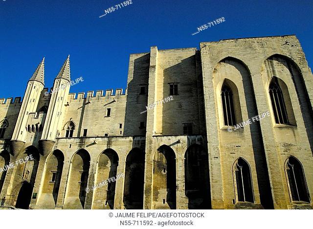 Popes Palace (14th century), Avignon. Provence, France