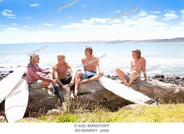 Four young male surfer friends chatting on beach rocks