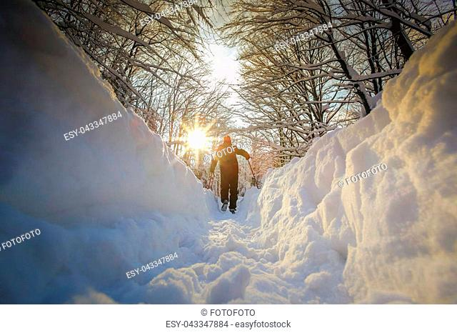 Low angle view of hiker walking on the path with fresh deep snow in the forest on the hill at sunset