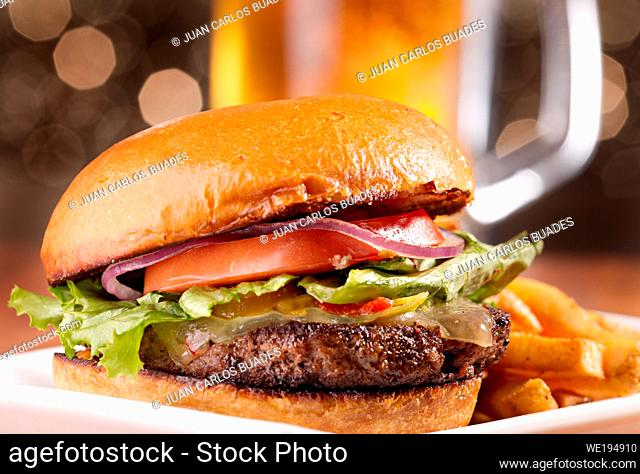 mixed burger with fries, tomato, onion, lettuce, ketchup and cheese